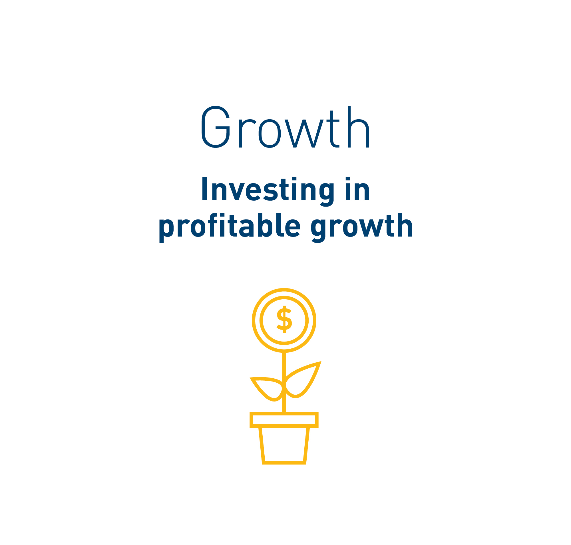 Text in image: Growth – investing in profitable growth